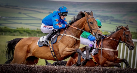 Join Together ridden by Megan Nicholls at Bratton Down . Copyright Tracy Roberts - www.turfpix.com