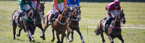 Conditions race at the Four Burrow Point-To-Point on 12th May 2019
